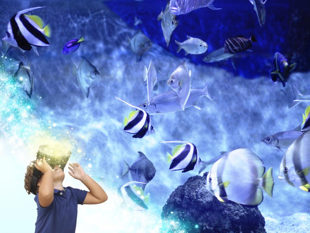 La VR cambiará la educación