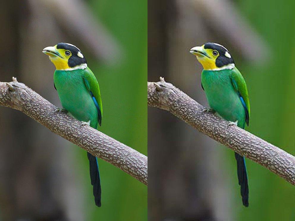 Algoritmo que mejora la compresión de imágenes y vídeo