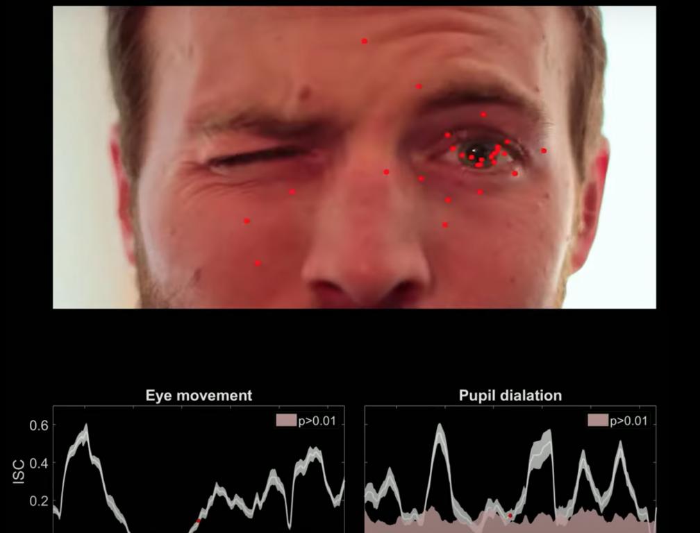 El seguimiento ocular se puede utilizar para medir el nivel de atención en línea utilizando cámaras web estándar - City College of New York
