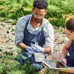 Seguridad alimentaria en cultivos y aprendizaje automático