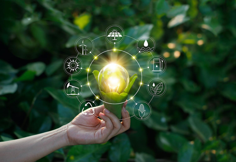 Energía verde generada con catalizadores biológicos
